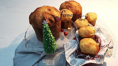 panettone-giorilli-fermente