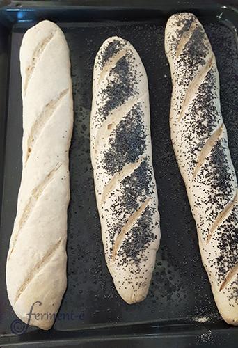 baguette-forma-fermente-003