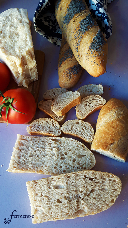 baguette-forma-fermente-004