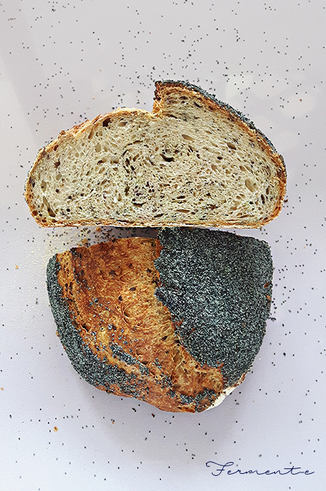 pane-con-i-semi-fermente-004